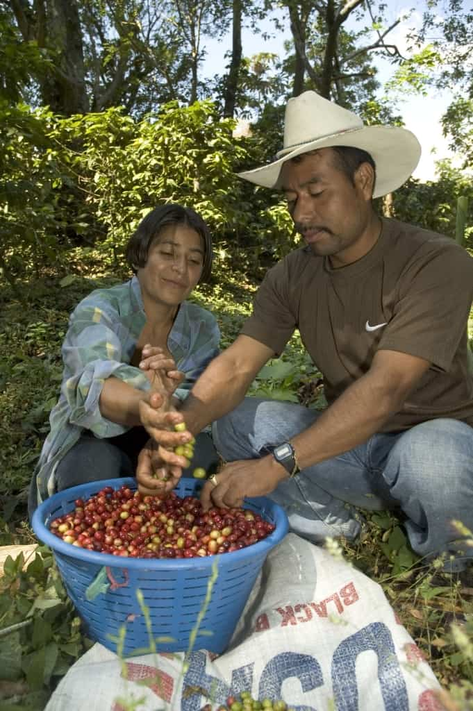 Foto: GEPA – The Fair Trade Company / C. Nusch